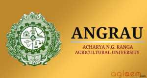ANGRAU Admission 2014   Acharya N.G. Ranga Agricultural University in institutes  Category