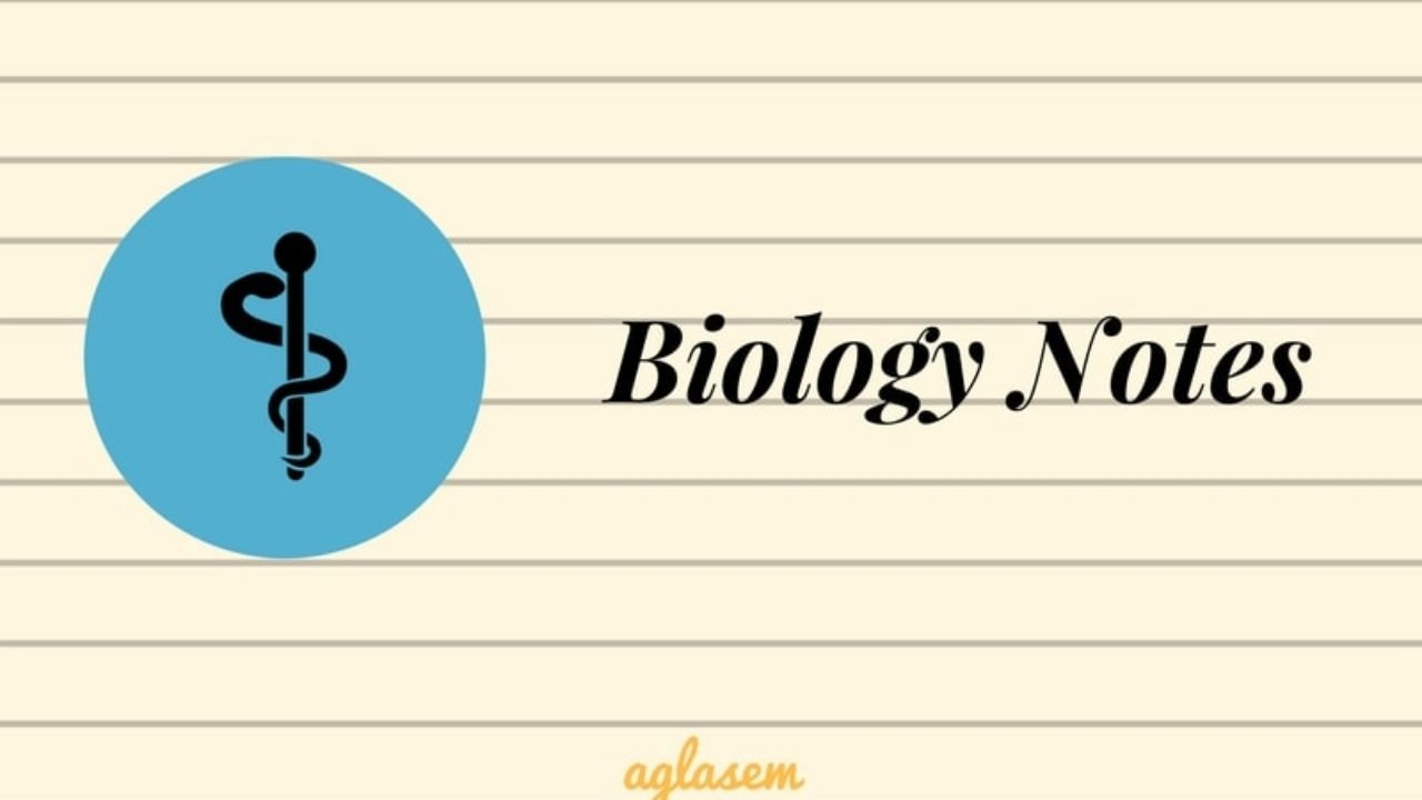 Biology Notes, Summary, Important Formula for NEET | AglaSem Admission