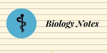 Physics Notes, Summary, Important Formula for JEE, NEET   AglaSem